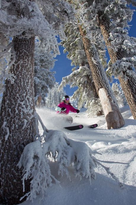 downhill skiing at Squaw Valley and Alpine Meadows