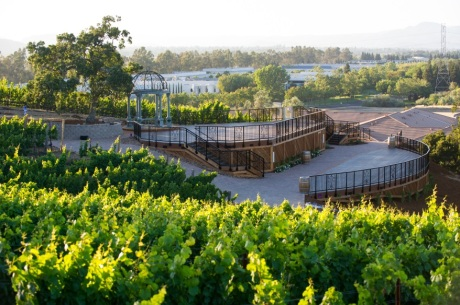 Meritage Vineyard Deck at Meritage Resort & Spa in Napa