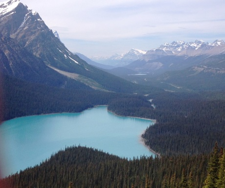 Lake Peyto, British Columbia, Canada--one of the world's prettiest lakes.
