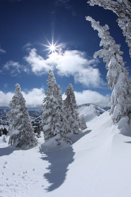 Skiing just got more exciting at Squaw Valley Mountain Resort in Olympic Valley, California. photo by Trevor Clark.
