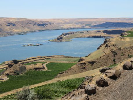 View from Maryhill Museum of Art, overlooking the Columbia Gorge. photo by Russ Wagner